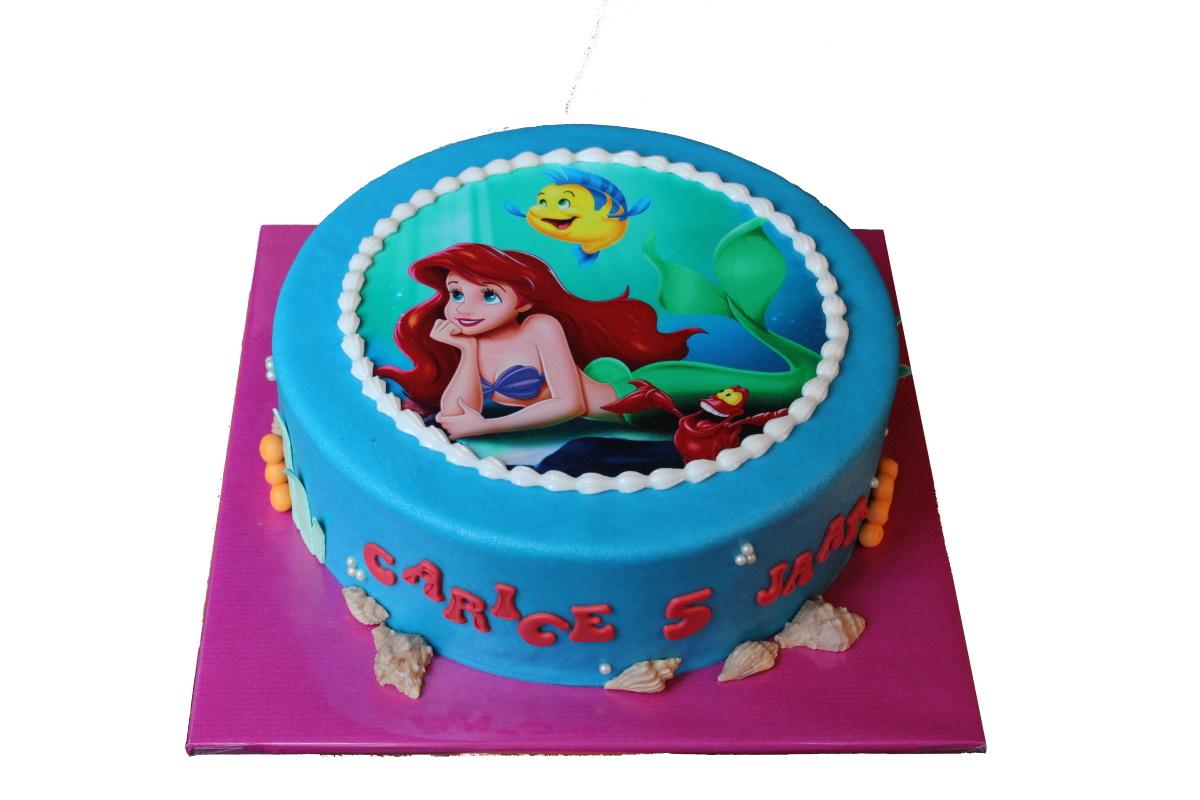 11.1 Ariel