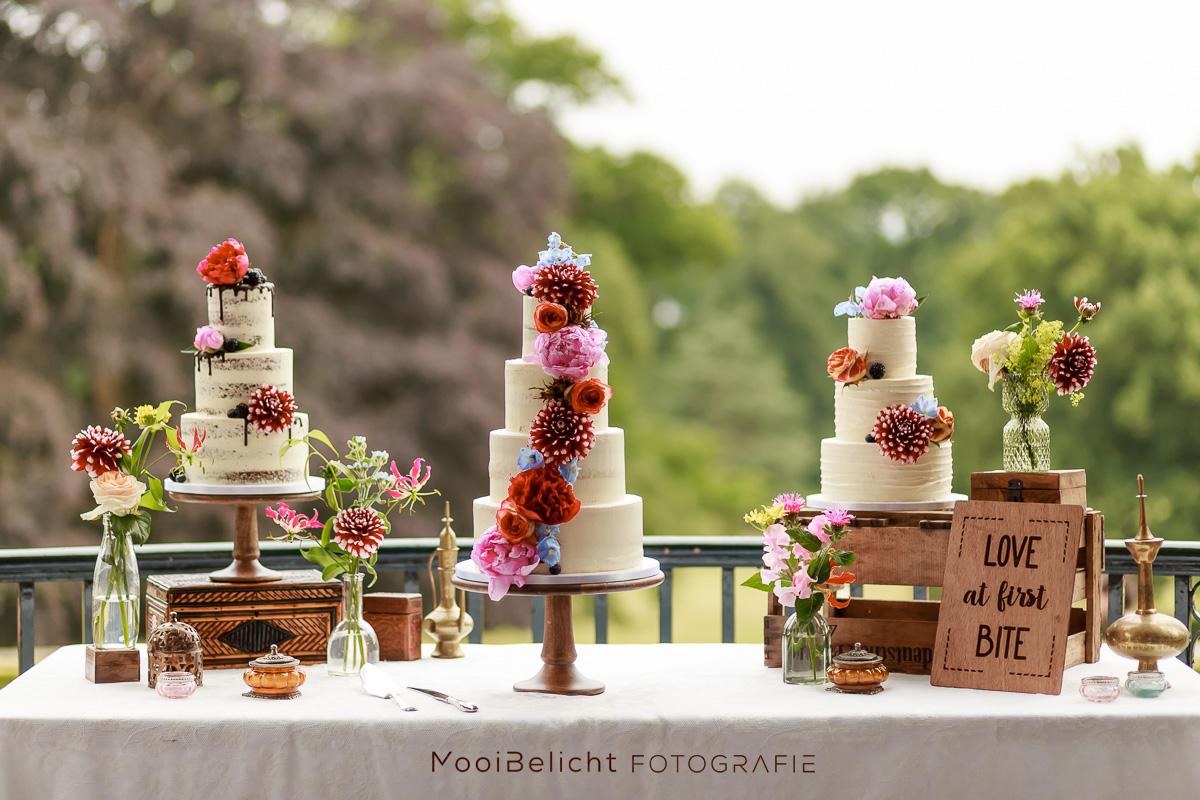 Bruidsfotografie MooiBelicht-108 -1
