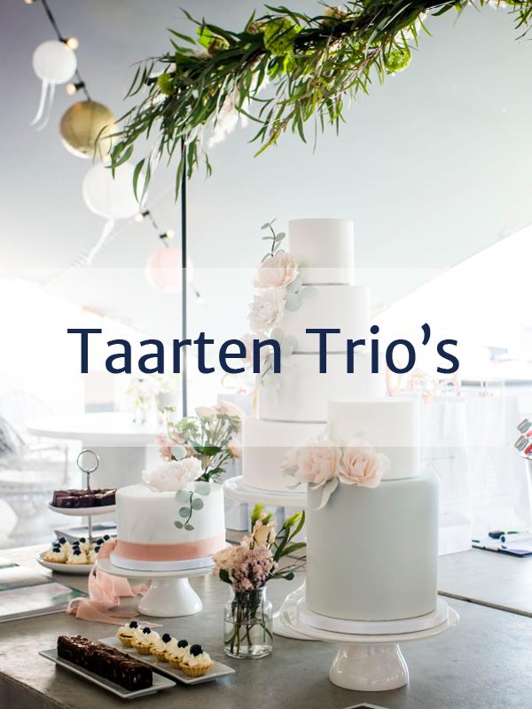 Portfolio_trio